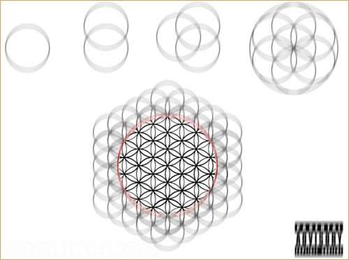 Download: Cocaine 80's Flower of Life